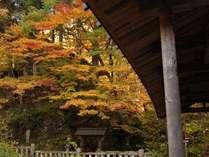 五台橋周辺の紅葉が素晴らしい