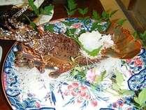 伊勢エビの舟盛り!10/1〜4/30がシーズン♪新鮮さが売りです!!通年ご用意できます。
