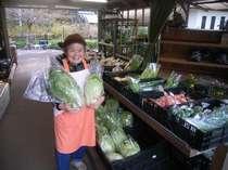 今年の白菜はこじゃんと太っちゅう!ええ味でちゅうき食べとうせ~! くらうどのお鍋に入ってます♪