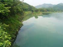 仁淀川すぐそこ♪お部屋から眺めて頂けます☆雄大な自然に時間を忘れてのんびりリラックス♪