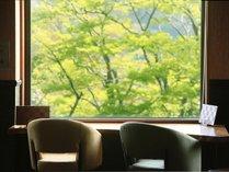 【GW限定】ゴールデンウィークは大人の隠れ家で静かに寛ぐ箱根旅■月の煌