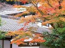 京の民宿 大原の里