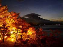 夕焼けの渚紅葉祭り・今年は10月27日(金)~11月12日(日)まで!会場は当館より徒歩3分)