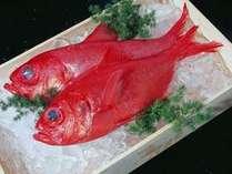 脂がのった近海産の金目鯛