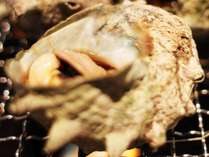 【浜焼き】絶品!サザエつぼ焼き&新鮮!地魚盛り合わせ♪[1泊2食付]