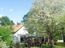 *【外観/グリーン期】ヤマナシが満開を迎えると、里山に一足遅い春が訪れます。