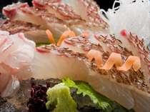 美味♪天然鯛のお造り