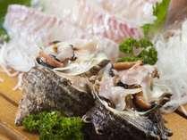 サザエと鯛のお造りは食感を楽しんで。伊勢志摩鳥羽の新鮮グルメ