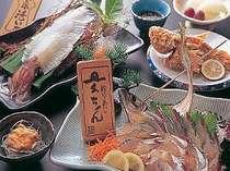天然魚と活イカプラン【全14品】