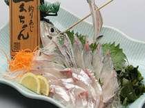 玄海天然魚造りと活きイカプラン【全14品】