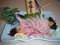 玄海天然魚とアワビお造りプラン【全14品】