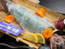 【玄海活イカのお造り】松風荘では、獲れたてのイカを品質管理。とろける甘味と旨味を味わえます。
