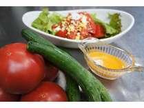 真夏の食卓が賑わう高原野菜が瑞々しい