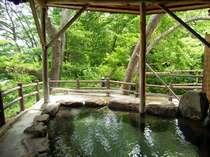 夏・新緑の露天風呂【水芭蕉の湯】(TVCMや雑誌の表紙にも起用されました)