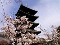 【興正寺】ホテルは八事山興正寺様の隣です。春は桜の名所に
