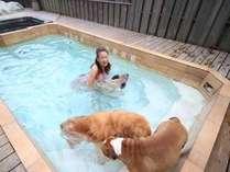 ワンちゃんといつでも一緒に遊べる温水流水プール