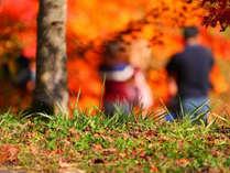 秋の遠刈田公園