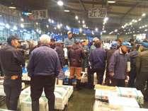 仙台中央卸売市場ではセリで新鮮な魚をGET