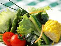 *食事一例(サラダ)/野菜本来の美味しさをお楽しみ頂けます。