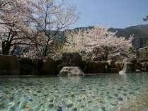 青空と桜のピンクのコントラスト♪名湯がより一層、身体に沁みわたります♪