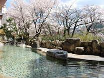 ◆お花見露天風呂◆四季の中で一番人気の日本らしいお風呂の景色になります。
