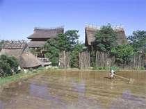 湯の川温泉 松園