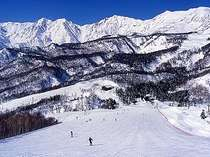 栂池高原スキー場「栂の森ゲレンデ」