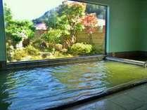 豊富な湧出量の温泉を楽しみ、色づく庭園をながめて温泉大浴場をお楽しみください(撮影日10/26)