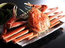 冬季限定★夕食+タグ付活松葉蟹★日本海の旬の味覚!