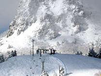 極上のパウダースノーで人気の志賀高原スキー場