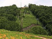志賀高原の豊かな自然