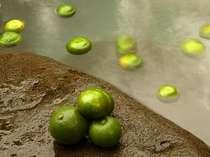 【離れの貸切露天風呂】1組/約60分 広々岩風呂では季節により無農薬の庭の柑橘香る蜜柑風呂が好評です