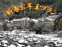 【新春お年玉価格】2018年の初旅は徳島で湯ったり♪8,800円~!