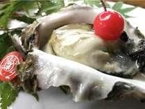 あだこの岩牡蠣!目の前の海で育った三重ブランドの牡蠣です