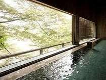 窓からは水上の四季折々の景色をご堪能いただけます♪