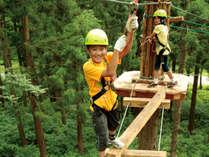 ★森の中、樹木の高所でスリリングな体験を満喫『コルチナ・アドベンチャーランド』