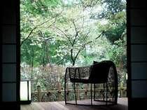 『松風庵』松籟の間(101号室)の広縁。周囲の木々や春には山桜もお楽しみ頂けます。