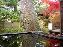 『松風庵』松涛の間(103号室)の秋の写真。お風呂と紅葉を満喫して下さい。