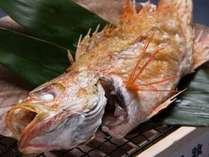 「幻の高級魚」、「世界で一番旨い魚」などと称されるのどぐろをぜひご賞味下さい。
