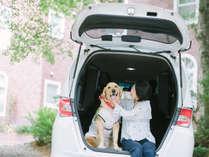 大切なワンコと一緒に過ごす休日。大型犬も歓迎です♪