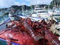 「伊勢海老」か「アワビ」でおもてなし♪新鮮地魚姿造り舟盛りもお出しします!