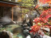 大浴場(紅葉) ※例年、10月下旬~11月初旬頃が紅葉をお楽しみ頂けます。