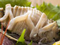 極上の肉厚天然黒あわび。ほのかな海の香りと独特の食感を楽しむならお造りで。