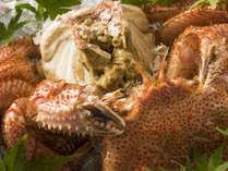 春から初夏が旬の地物毛蟹は一度食べると病みつきになる美味しさ!濃厚なカニみそは地酒に合います