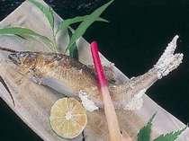 【夏季限定!プチ贅沢】≪吉野の夏グルメ鮎料理を食べよう!≫鮎のせせらぎ会席プラン