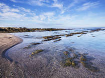 「もっとこの地にいたいな」という名残惜しさも連泊で解消!海沿いならではの自然美溢れる、ご滞在を。