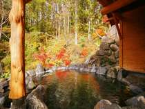 天然の滝と奥利根連山の紅葉を望む大露天風呂「百景花」 ※冬期閉鎖(12月~4月下旬頃)