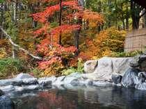 ◆【百景花:秋】紅葉を見ながらお入りください◆