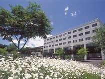 ◆【春】ホテルサンバード外観(マーガレット)◆
