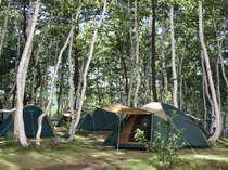 ◆【夏:ホテル敷地内】白樺キャンプ場◆